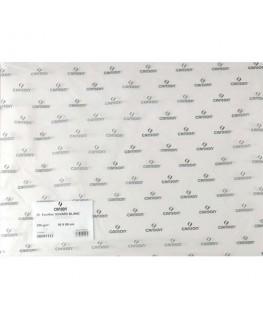 Feuille de papier buvard 250g 50 x 65 cm blanc - Canson®