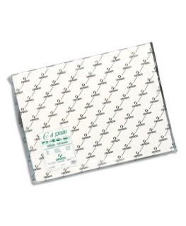 Feuilles de papier dessin C A GRAIN 180g 50 x 65 cm - Canson®