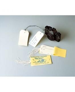 Carnet de 10 étiquettes bagage 120 x 66 mm + attache ficelle - Avery®