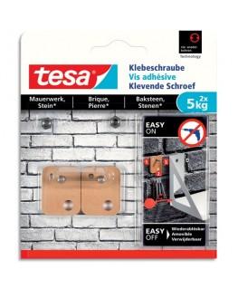 Boîte de 2 vis adhésives rectangulaire pour les surfaces briques et pierres
