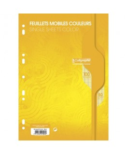 Etui de 100 feuilles mobiles jaune perforées 9 trous 80g grands carreaux A4 - Calligraphe