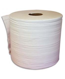 Lot de 2 bobines d'essuyage 2 plis 1000 formats 30 x 21 cm