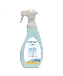 Spray 750 ml nettoyant pour les vitres et surfaces modernes
