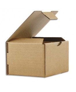 Boîte postale en carton brun simple cannelure
