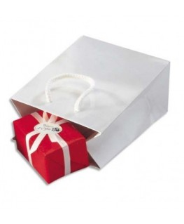 Paquet de 25 sacs pelliculés blanc avec poignées cordelières assorties 19 x 27 x 10 cm - Emballage