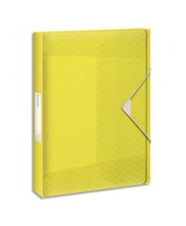 Boîte de classement Colour'Ice dos 2.5 cm