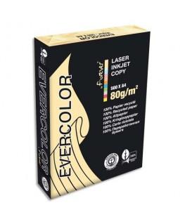 Ramette de 500 feuilles papier couleur recyclé EVERCOLOR 80g A4 ivoire - Clairefontaine