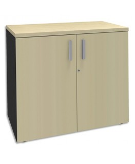 Armoire basse 2 portes Steely