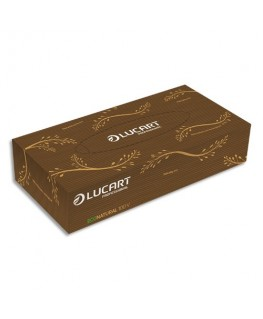 Boîte de 100 mouchoirs jetables enchevetrés 2 plis Havane Econatural, L20 x H21 cm - Lucart Professionnal